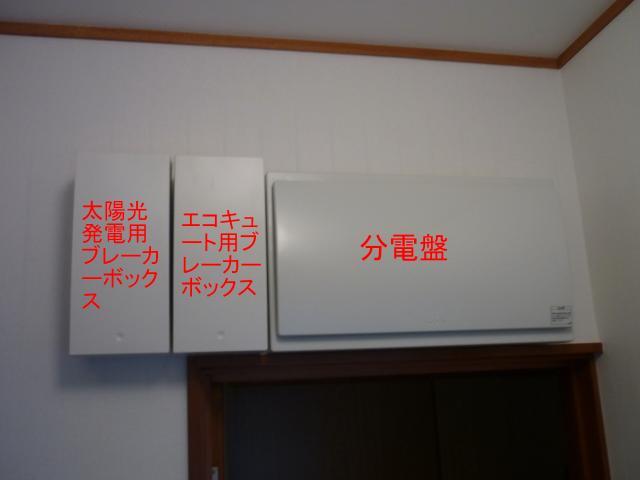 p1050002-1.jpg