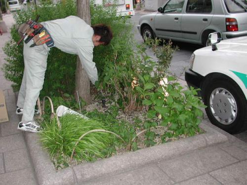 植栽を傷めない様に丁寧に設置します