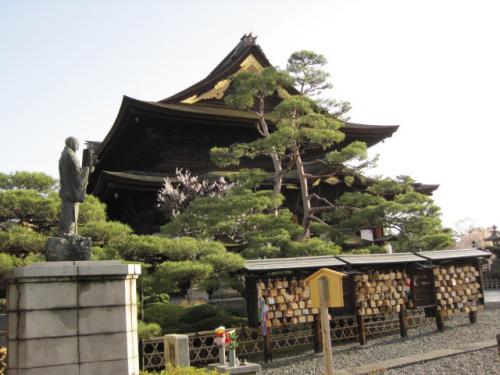 【長野県長野市】今朝の善光寺の風景【四季の花・桜の花】