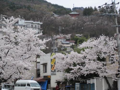 """和菓子で有名な""""さくら坂 栄心堂""""があります"""