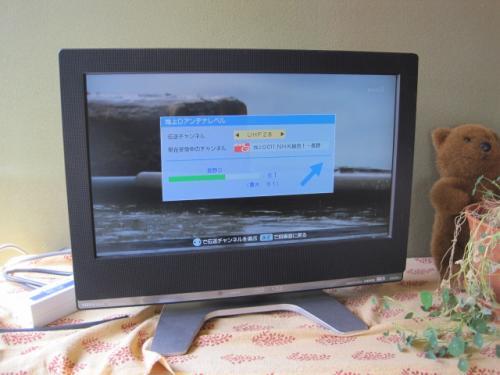 テレビは自動設定です
