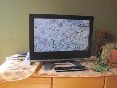 テレビの自動設定完了です  きれいに写るようになりました