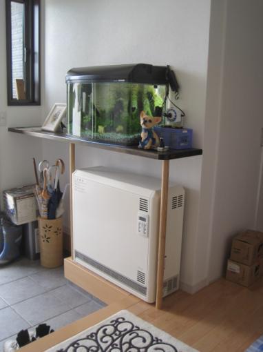 玄関の蓄熱暖房器の上に熱帯魚を飼いました。