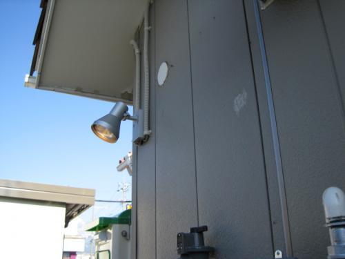 ランプはハロゲンランプの250Wです