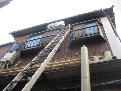 リビングは2階です  ハシゴをいっぱいに伸ばしてとどきました