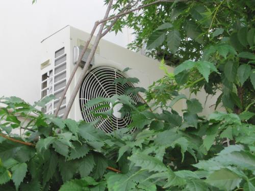 屋外機のファンに植物のつるが絡み付いていました  つるを取ったら快調に冷えてきました