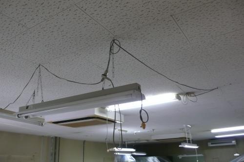 天井に照明器具がチェーンで吊ってあります