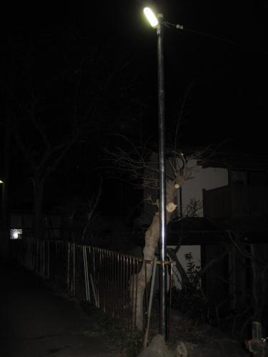 LED防犯灯の夜間の点灯状態です