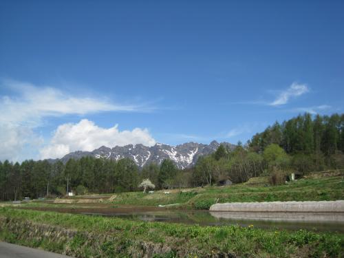 田植え前の、のどかな風景でした。