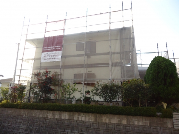 20121207ts-7.JPG