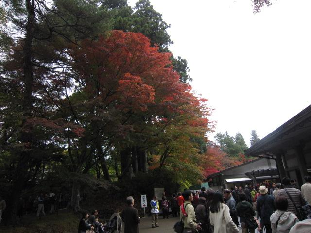 2012-10-30-175.jpg