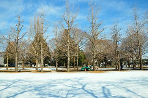 茨城県立歴史館の雪景色02