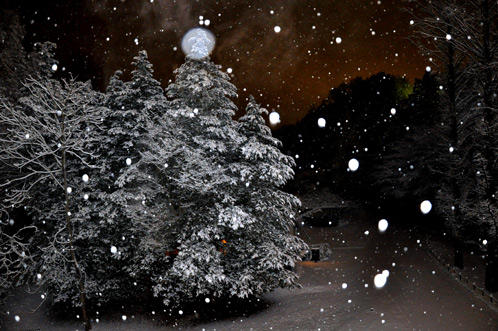 2011年1月15日水戸で初積雪03