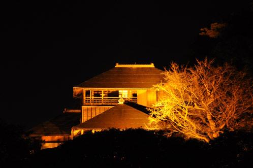 2011年偕楽園・夜梅祭02