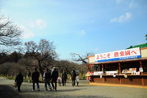 2012年2月22日偕楽園梅便り02