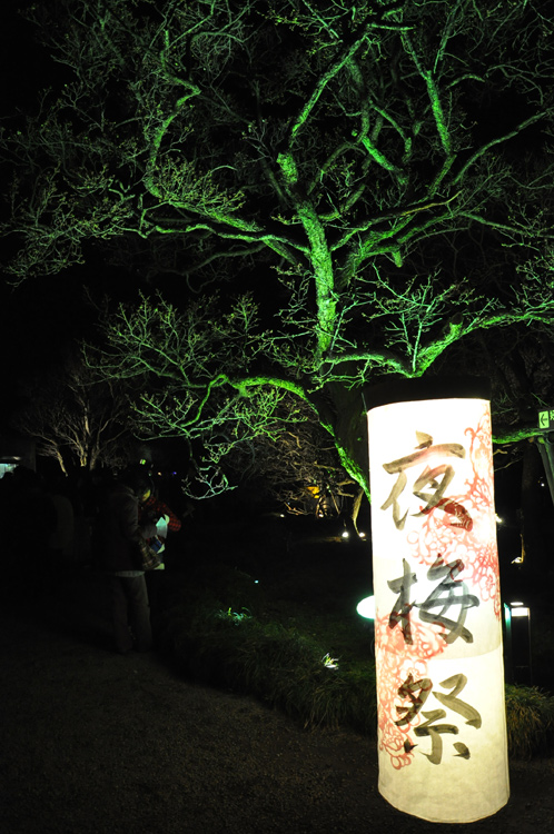 夜の偕楽園・夜梅祭2012-03