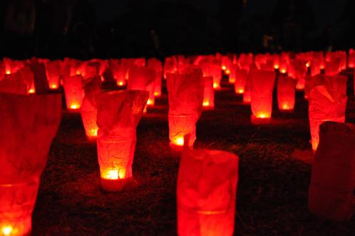 夜の偕楽園・夜梅祭2012-11