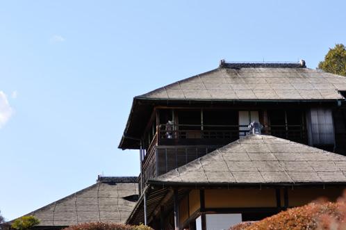 水戸市偕楽園梅まつり2013始まる02
