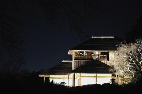 夜梅祭2013水戸偕楽園01