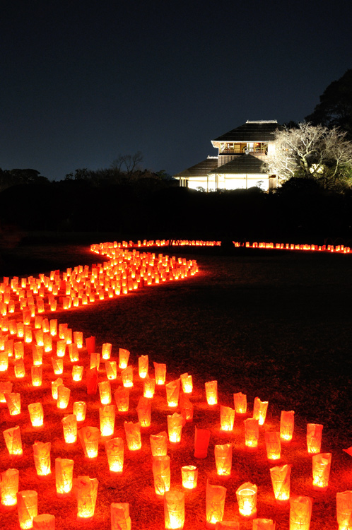 夜梅祭2013水戸偕楽園02