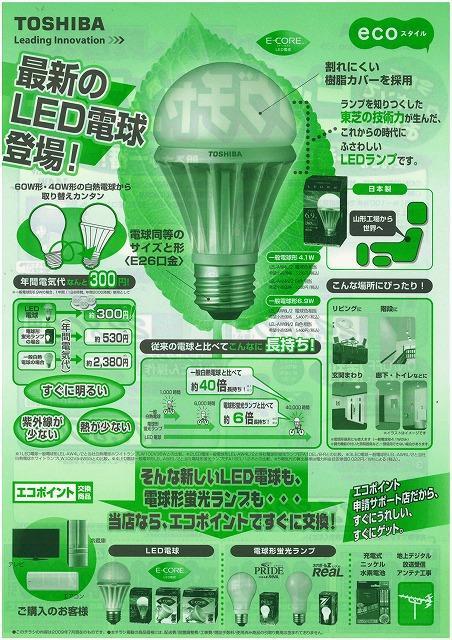 エコ電球チラシ
